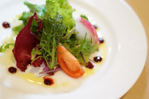 menu-salad-organic